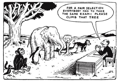 cartoon about standardized testing
