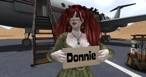 "Meg O'Ryan waits at SYD airport arrivals with a sign that reads ""Donie"""