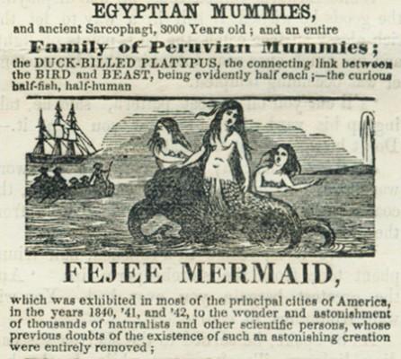 1842 advertisement for Fejee Mermaid