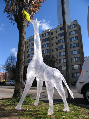 giraffe made of sellotape