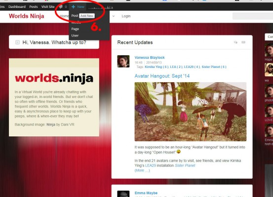 Screen cap of Worlds.ninja edit windows